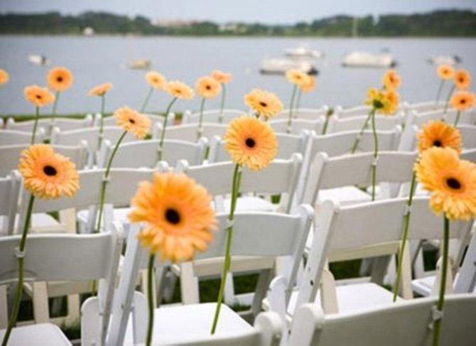 flores-da-estacao-gerbera-4