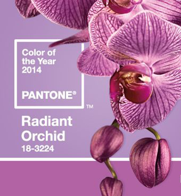 radiant-orchid-tendencia-para-2014-2